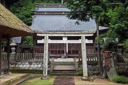 鳥居と社殿3