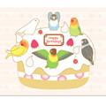 077ポストカード/バースデーケーキ/ボタン