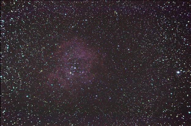 バラ星雲 (2012/11/16)