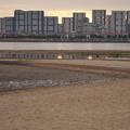 IMGP0739 海辺のマンション