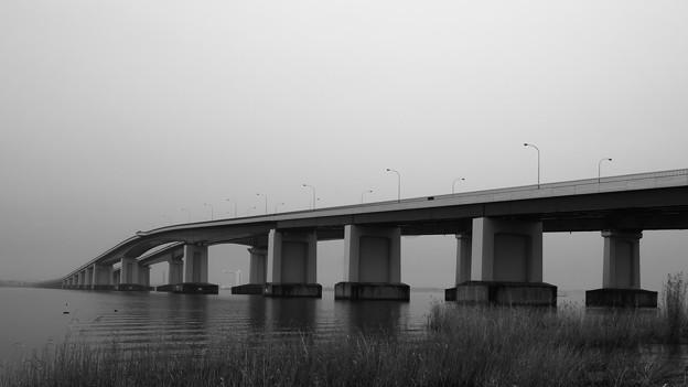 Photos: 対岸は霧みたい。