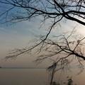 琵琶湖は春の陽射