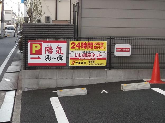 陽気 2013.03 (6)