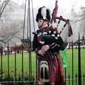 Photos: スコットランドの楽器