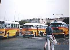 バス(マルタ)