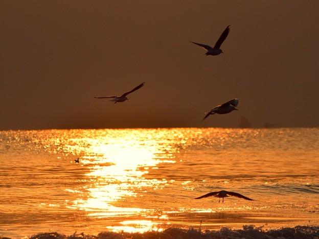 日没間際の湘南・鵠沼海岸 #湘南 #藤沢 #海 #波 surfing #wave #mysky #夕焼け