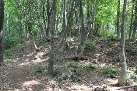 虎御前山砦