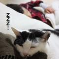 Photos: 2012_10_16_0351