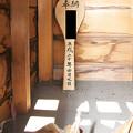 Photos: 120908-02おしゃもっさん(岩本)