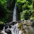写真: 養老の滝