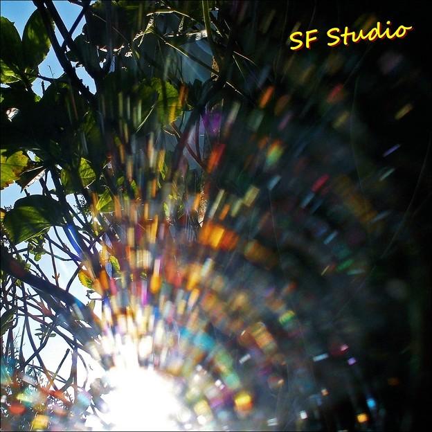 秋の可視光線