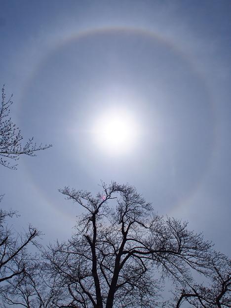 Photos: 日暈130326-1