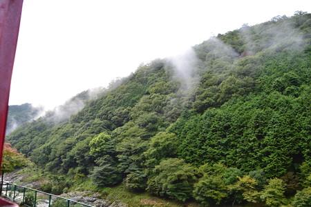 霧がかかる@トロッコ保津峡駅-トロッコ亀岡駅 [8/21]