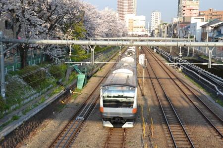 桜とE233系0番台@東中野-中野 [3/28]