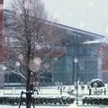 写真: Early morning snow