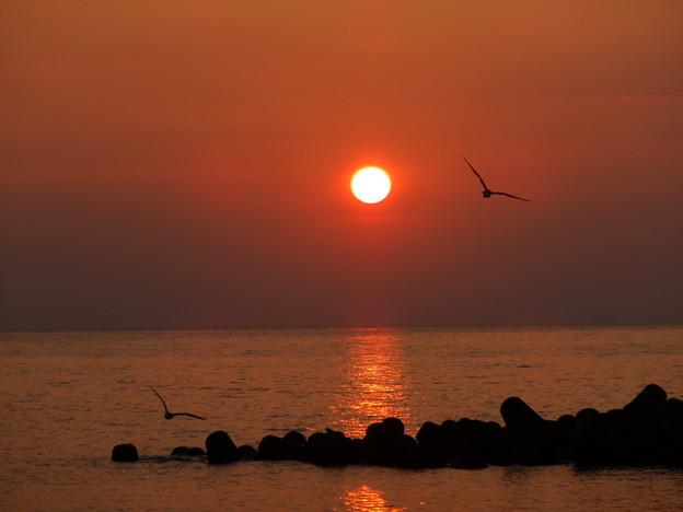 カップルと夕陽