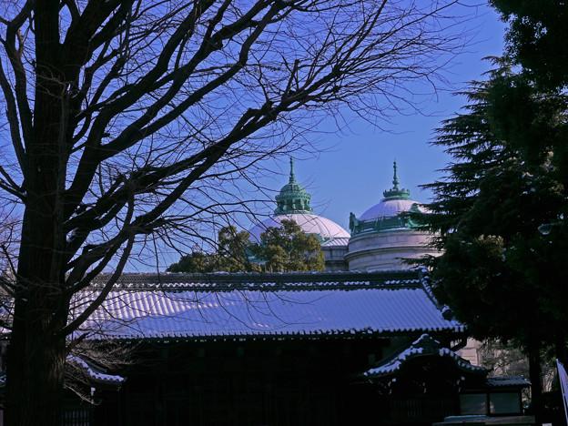 上野公園雪景色954c