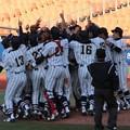 第8回関東地区大学野球選手権大会 決勝! 2012.11.04