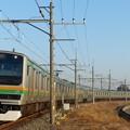 Photos: 宇都宮線 15両編成と青い空