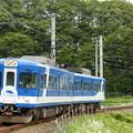 Photos: P1180108
