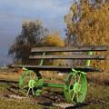 写真: 秋のベンチ