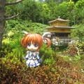 Photos: 京都にて