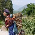 畑仕事に向かう老女