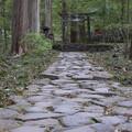 Photos: パワースポットへ続く古道