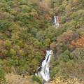 写真: 色づき始めた滝