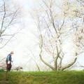 Photos: 犬と散歩