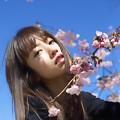 Photos: Cherry blossom, blue sky, & cute girl