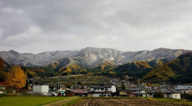 高井里の秋3段紅葉と冠雪201311,13 (1400x778)