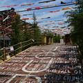 写真: 夏の赤レンガ倉庫