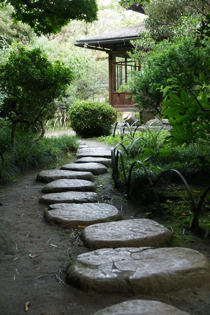 三渓園の飛び石