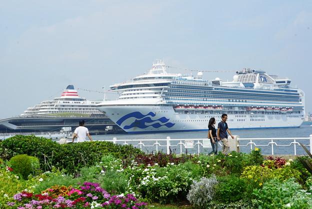 Photos: 豪華客船