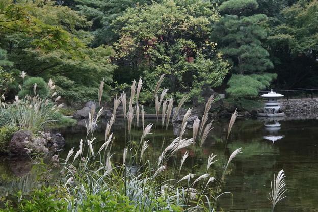 初秋の横浜公園