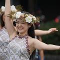Photos: フラダンス