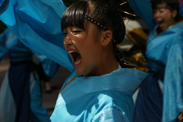 ソーラン踊り