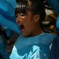 写真: ソーラン踊り