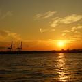 Photos: 沈む太陽