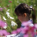 写真: 花愛でる少女