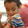 写真: ハツカネズミと少年