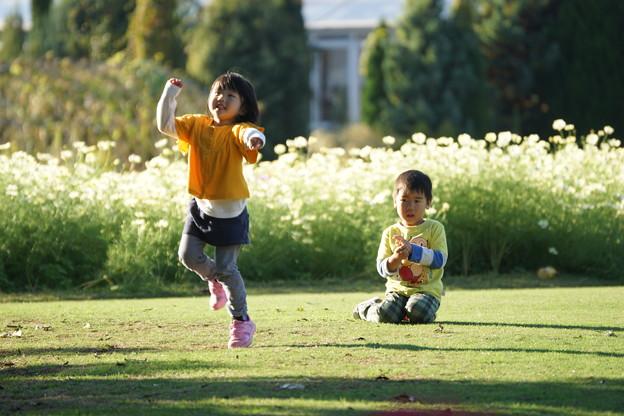 芝で遊ぶ子供