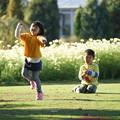 写真: 芝で遊ぶ子供