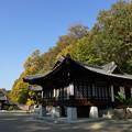 Photos: 晩秋のコリア庭園