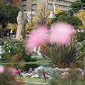 Photos: 晩秋の山下公園