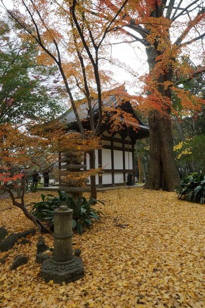 晩秋の覆堂