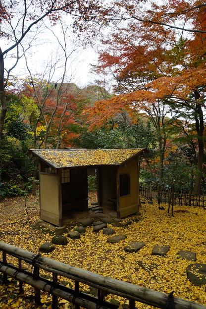 晩秋の休憩所