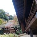 Photos: 月華殿と天授院