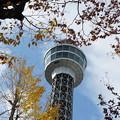 初冬のマリンタワー